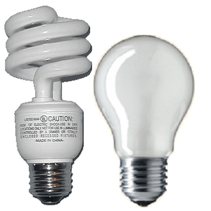 Fluorescent and incandescent light bulb