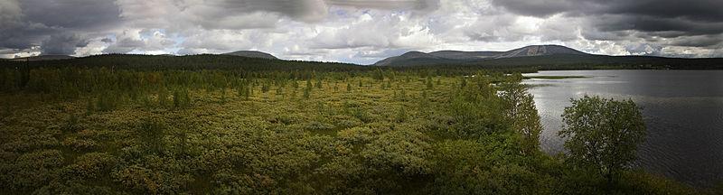 File:Yllastunturi Finland.jpg