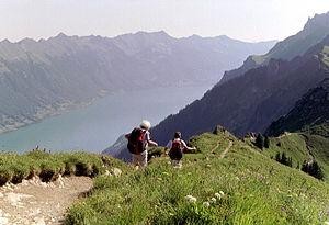Brienzersee 1, Zwitserland