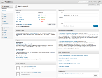 WordPress dashboard interface