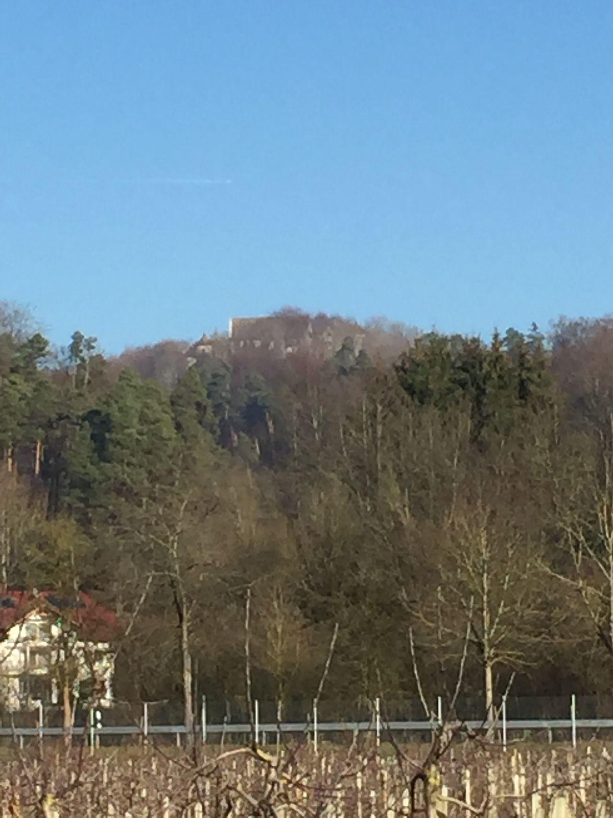 Hohenfels Castle Hohenfels  Wikipedia