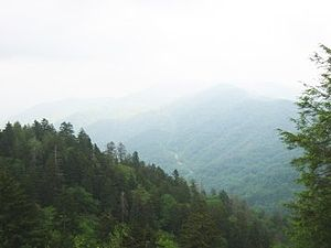 Great Smoky Mountains National Park - USA