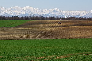 A scene of Tokachi Plain, Hokkaido, Japan.
