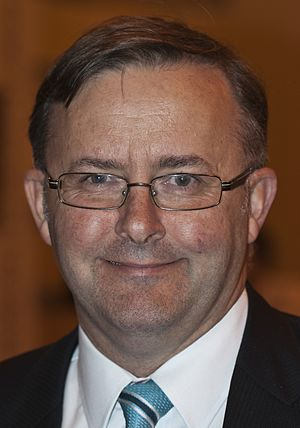 English: Anthony Albanese, Australian Member o...