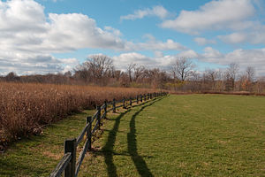 A park fence, taken in Meadow Brook Park, Urba...