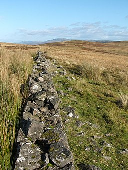 Dry stone wall from edge of Nobleston Wood - geograph.org.uk - 1009827