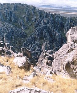 Bosque de piedras de Huayllay  Wikipedia la enciclopedia