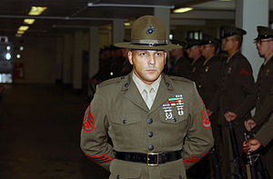 A Senior Drill Instructor supervises the inspe...