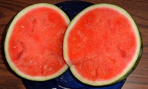 Seedless watermelon Purchased Feb.