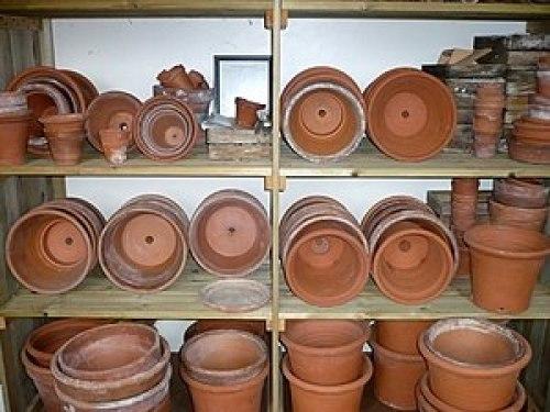 English: Shelves of flower pots in Darwin's la...