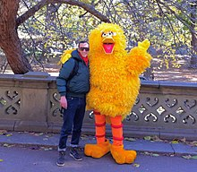 big bird wikipedia