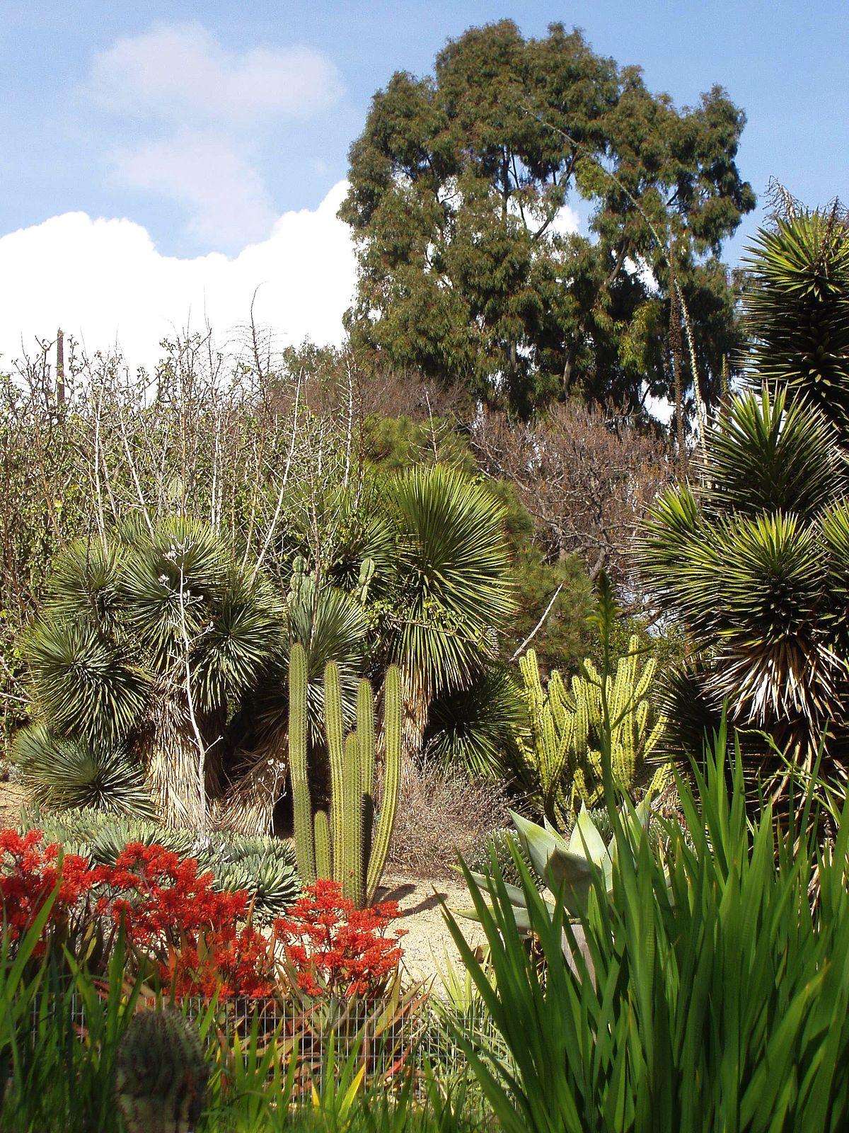 UCI Arboretum  Wikipedia