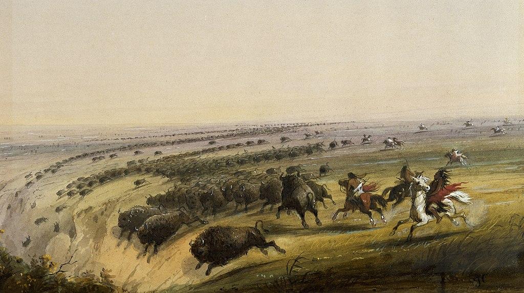English Hunting Buffalo