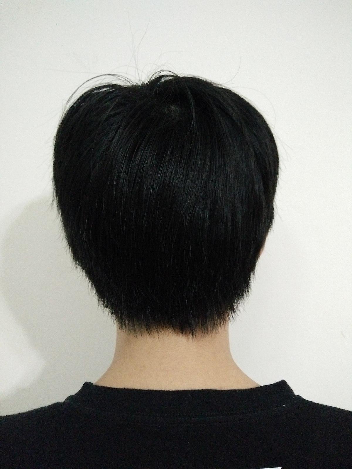 Black Hair Boys : black, File:Boy, Short, Black, Hair,, View.jpg, Wikimedia, Commons