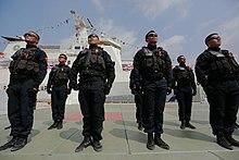 海巡特勤隊 - 維基百科,自由的百科全書
