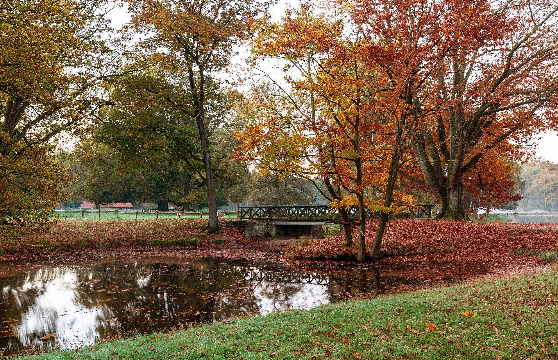 Beautiful Fall Location Wallpapers Autumn Wikipedia
