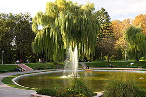 English: Park with a fountain in the city of K...