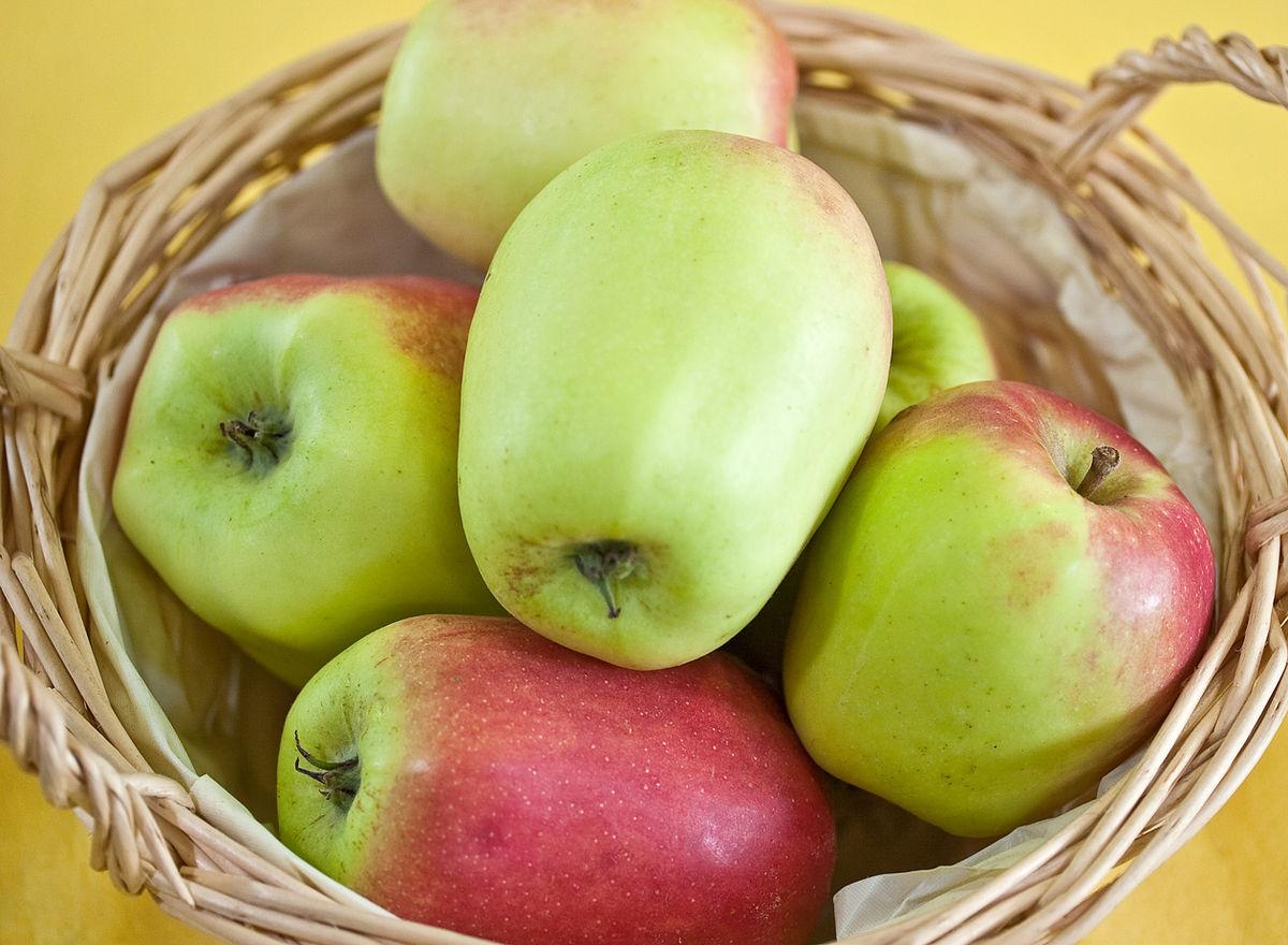 Cloche pomme  Wikipdia