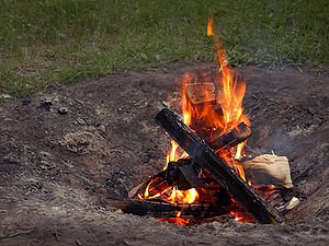 English: A small fire in a backyard fire pit.
