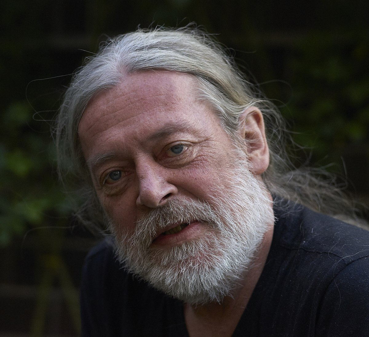 Harald Hauswald  Wikipedia