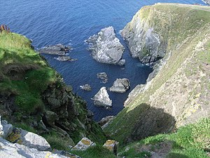 English: Looking down the cliff at Sumburgh
