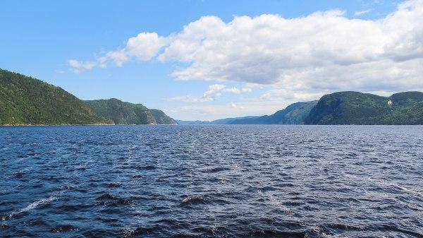 Saguenay River Wikipedia