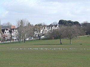 English: Streatham Common Streatham Common, wi...