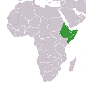 Countries in the Horn of Africa, are Eritrea, ...