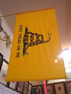 Don't Tread on Me Flag in the Museum of the An...