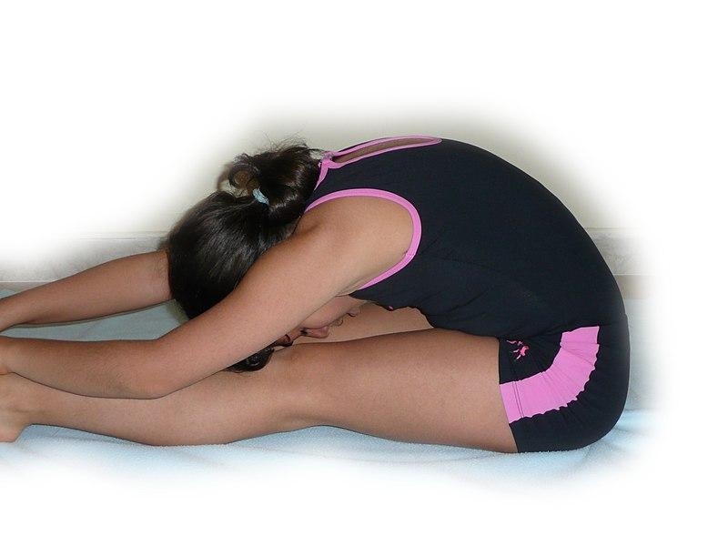 File:Stretching 1200823.jpg