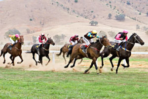 The Swifts Creek Cup at the Tambo Valley Picni...