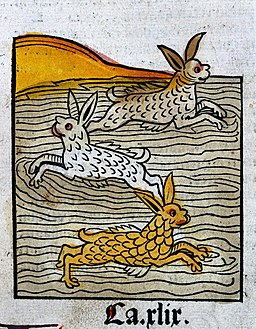 Three hares swimming in a river, woodcut, 1547 Wellcome L0029225