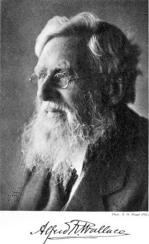 Alfred Russel Wallace (1912)
