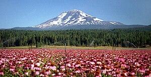 Mount Adams 3'742m, Washington, USA - with Ech...