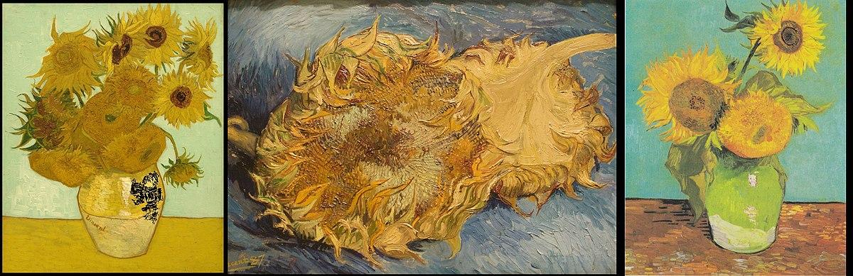 Girasoli Van Gogh  Wikipedia
