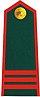 Vietnam Border Defense Force Sergeant major.jpg