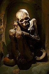 Bogota mummy