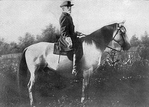 English: General Robert E. Lee mounted on Trav...