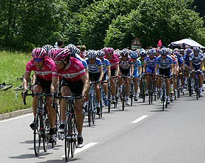 The peloton of the Tour de France