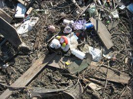 Toys in Debris