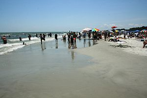 English: The beach on Hilton Head Island, Sout...