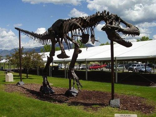 File:T. rex Big Mike.jpg