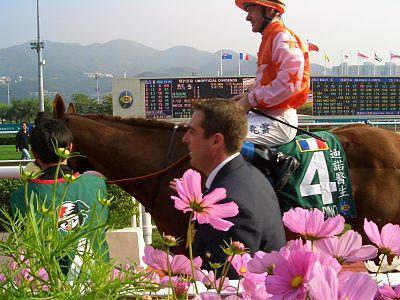 2007年香港國際賽事 - Wikiwand