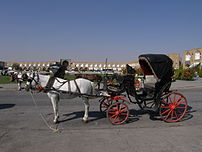 Horse and buggy (Naqsh-i Jahan Square)