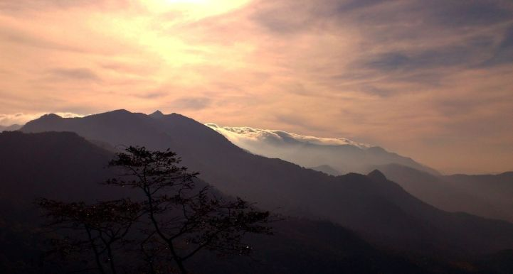 Image result for Chimmony and Ponmudi photography