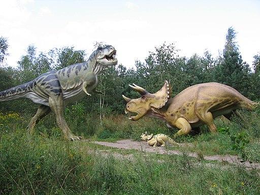 Triceratops-vs-T-Rex001