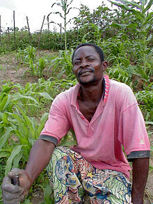 Agriculture in the Democratic Republic of the Congo