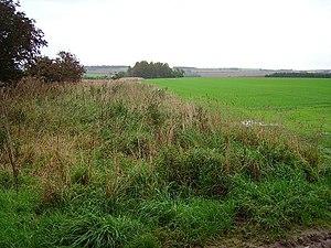 English: Field margin A wild strip left around...