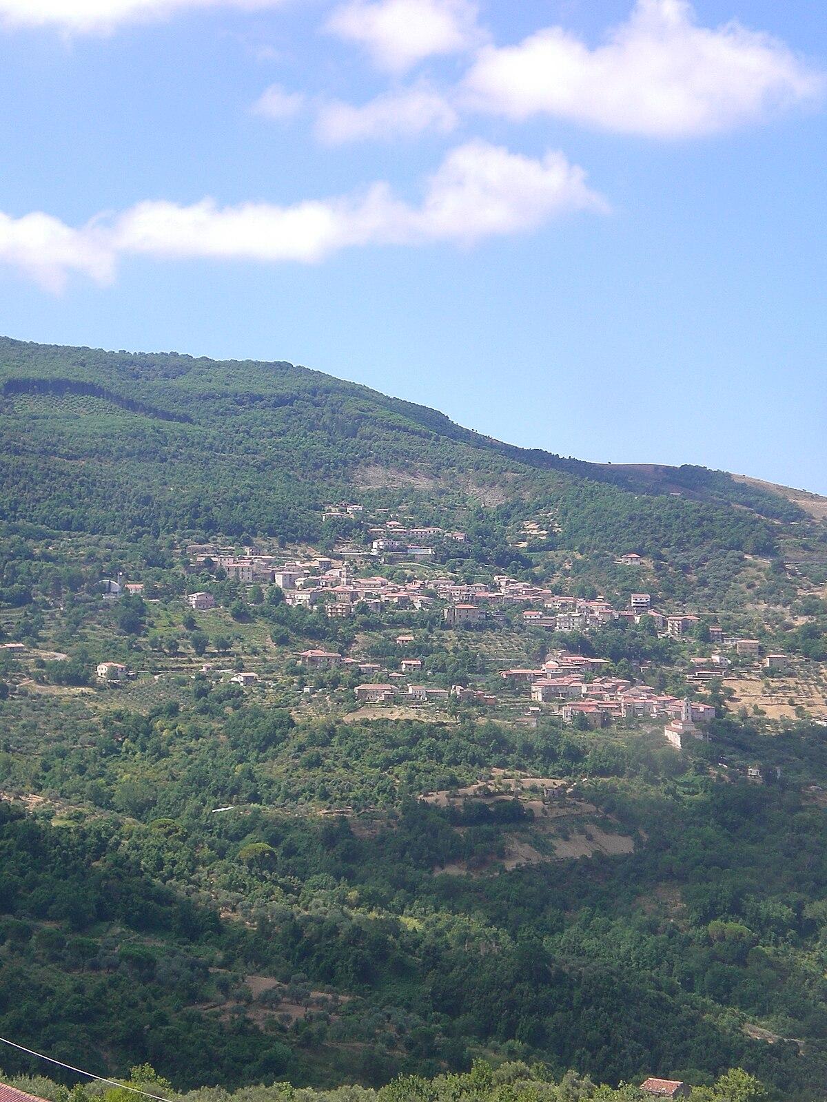 Perdifumo Wikipedia