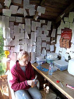 English: DIY tearoom at Haytongate Farm DIY te...